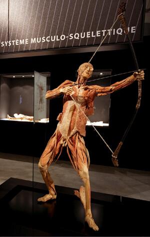 Ausstellungsansicht © Our body-à corps ouvert
